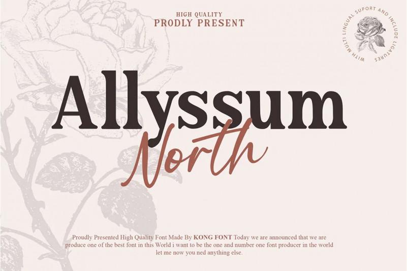 Allyssum North Font