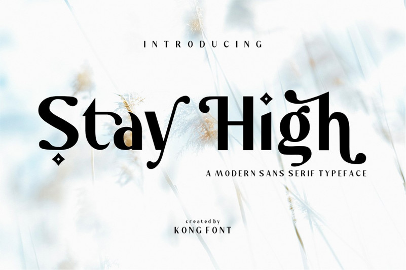 Stay High Font