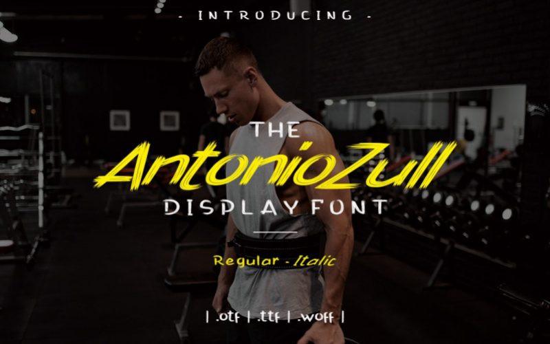 Antonio Zull Font