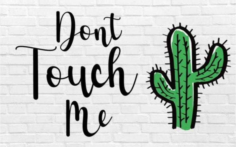 Cactus Font