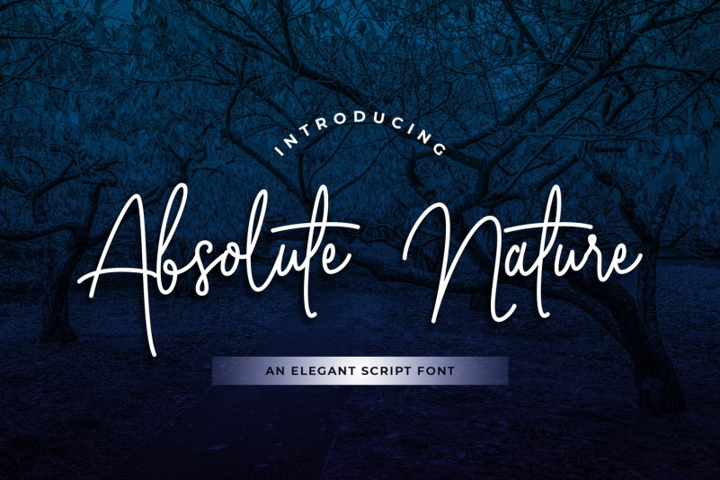 Absolute Nature Font