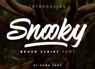 Snooky Font