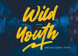 Wild Youth Font