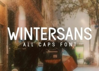 Wintersans Font