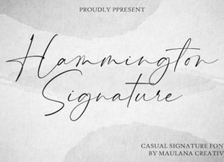 Hammington Font