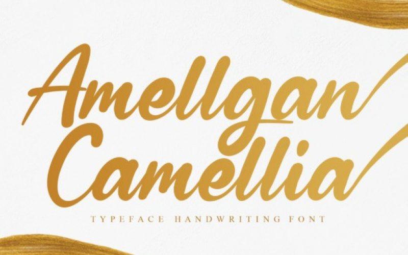 Amellgan Camellia Script Font