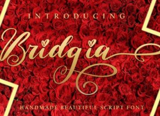 Bridgia Script Font