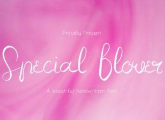 Special Flower Script Font