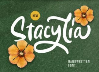 Stacylia Font