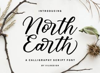 North Earth Script Font