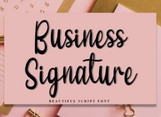 Business Signature Script Font