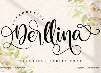 Derllina Calligraphy Font