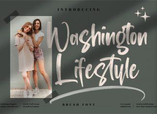Washington Lifestyle ,Brush Font