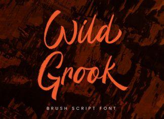 Wild Grook Brush Font
