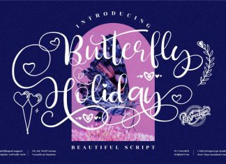 Butterfly Holiday Script Font