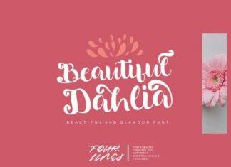 Beautiful Dahlia Calligraphy Font