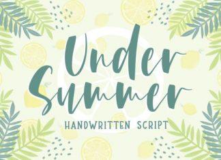 Under Summer Script Font