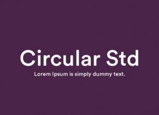 Circular Std Sans Serif Font