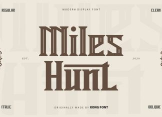 Miles Hunt Display Font