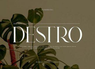 DSETRO Serif  Font