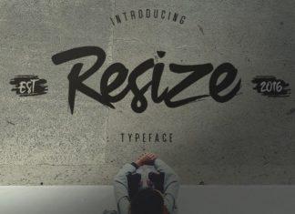 Resize Brush Font