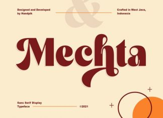 Mechta Serif Font