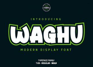 Waghu Display Font