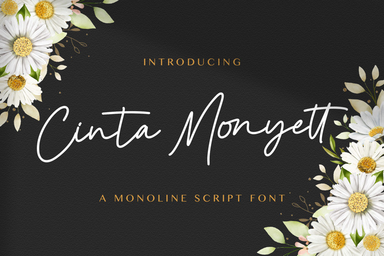 Cinta Monyett Handwritten Font