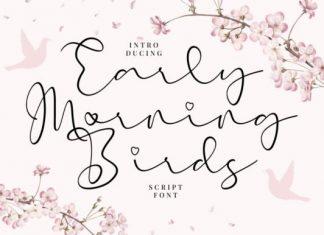 Early Morning Birds Script Font