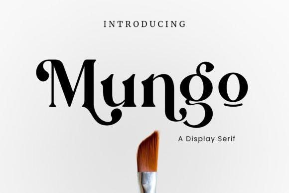 Mungo Serif Font