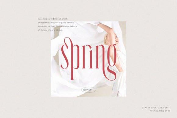 Snagrids Serif Font