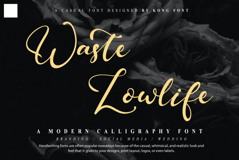 Waste Lowlife Script Font