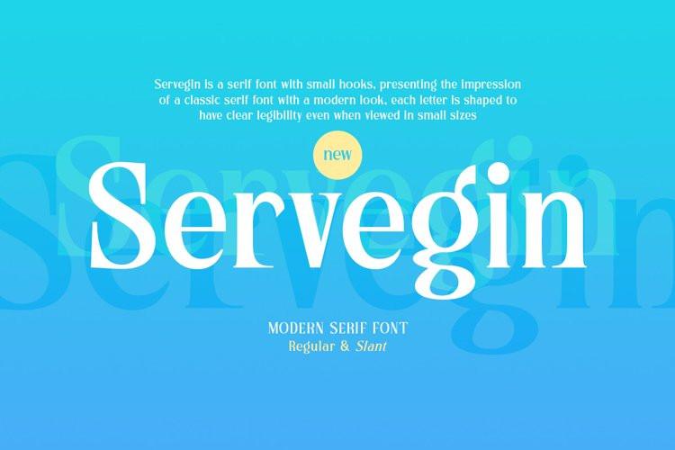 Servegin Serif Font