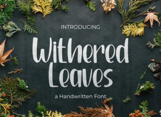 Withered Leaves Display Font