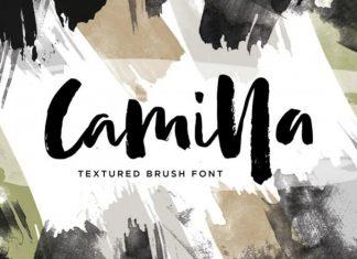 Camilla Brush Font