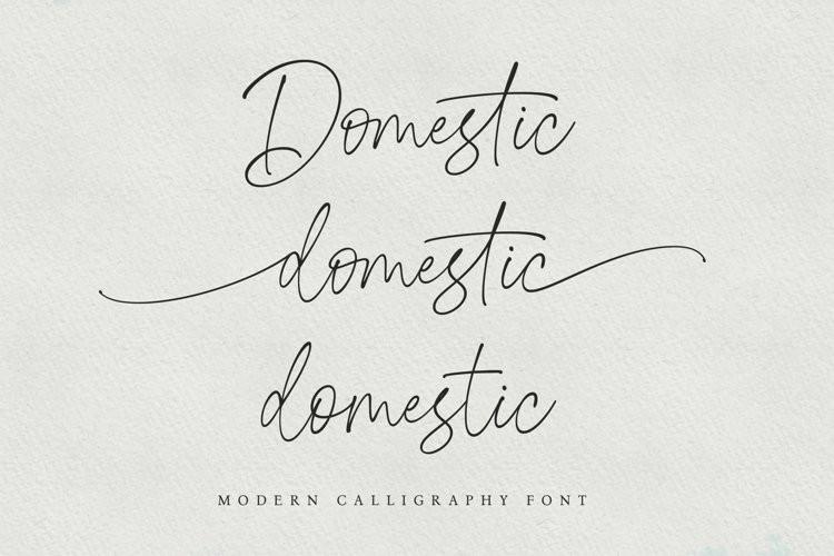 Domestic Script Font