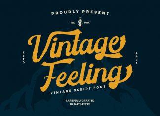 Vintage Feeling Script Font