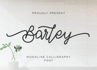 Barley Handwritten Font