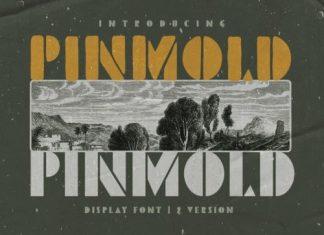Pinmold Display Font