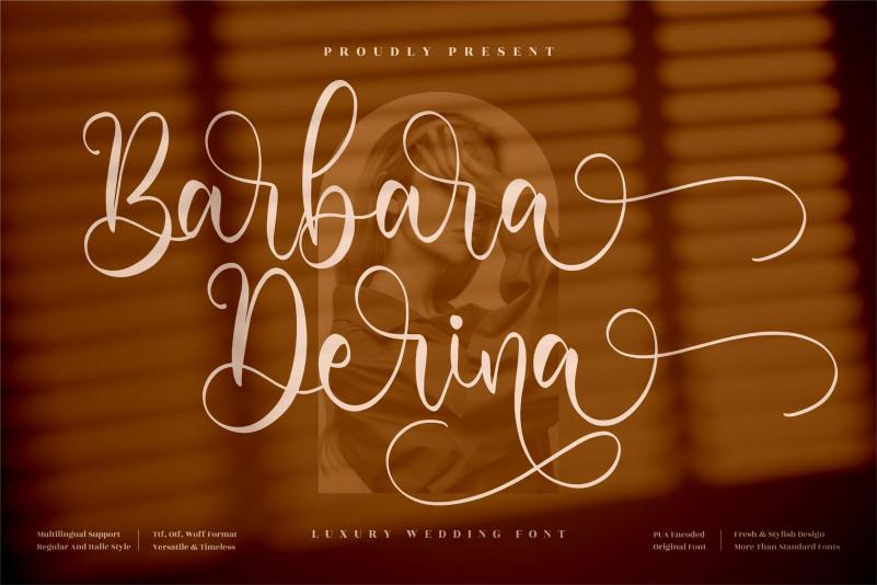 Barbara Derina Script Font