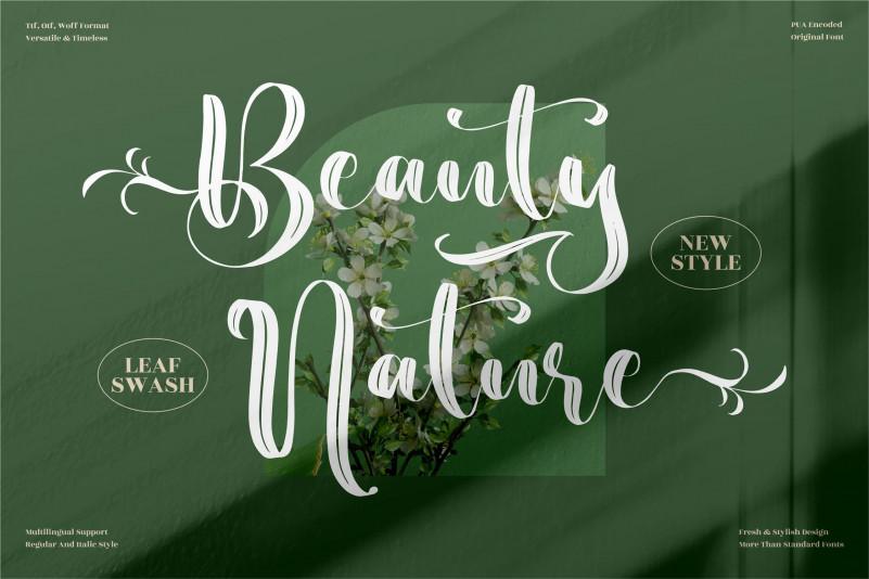 Beauty Nature Brush Font
