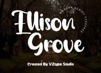 Ellison Grove Script Font