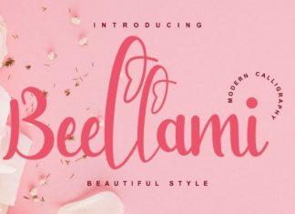 Bellami Script Font