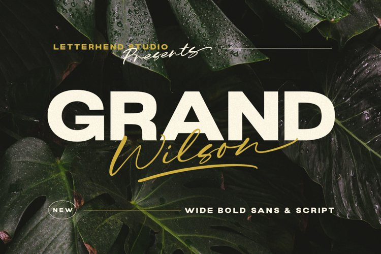Grand Wilson Sans Serif Font