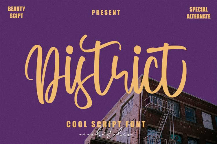 District Script Font