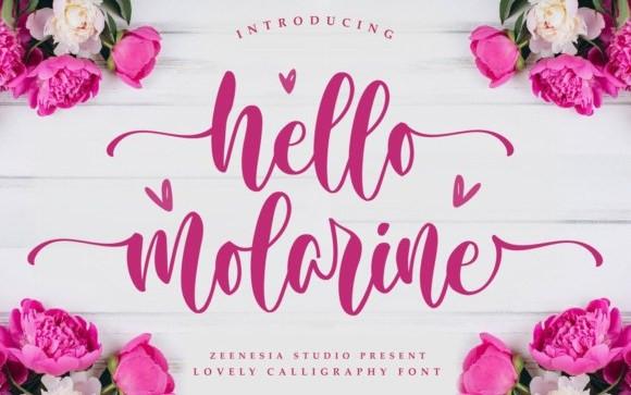 Hello Molarine Script Font