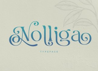 Nolliga Display Font