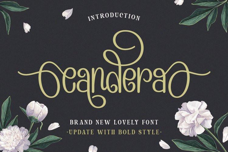 Candera Script Font