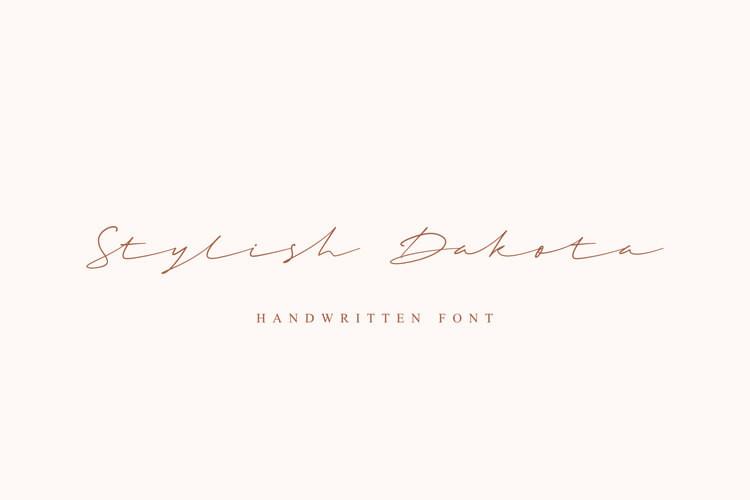 Stylish Dakota Script Font