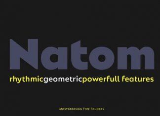 Natom Pro Sans Serif Font